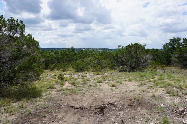 Tbd Pursley Rd, Dripping Springs, TX - USA (photo 4)