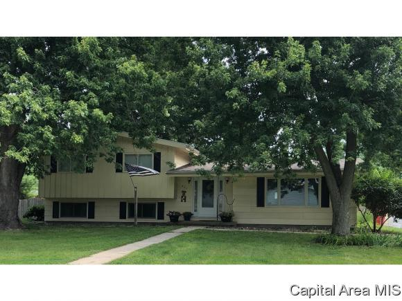 Tri-Level, Residential,Single Family Residence - Ashland, IL