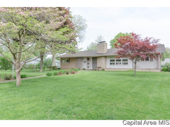 Ranch,1 Story, Residential,Single Family Residence - Auburn, IL (photo 2)