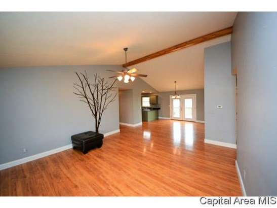 Ranch,1 Story, Residential,Single Family Residence - Athens, IL (photo 4)