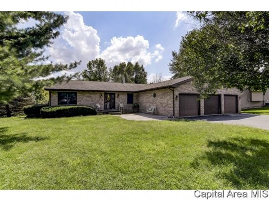 Ranch,1 Story, Residential,Single Family Residence - New Berlin, IL