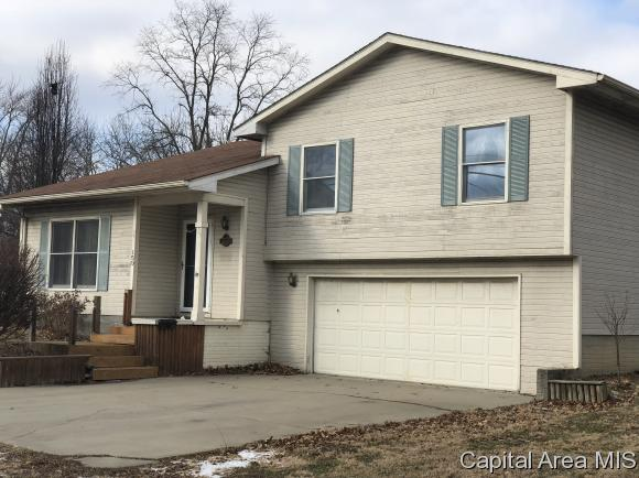 Tri-Level, Residential,Single Family Residence - Waverly, IL (photo 1)