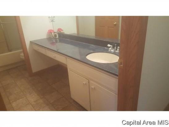 Residential,Single Family Residence, 2 Story,Bi-Level - Sherman, IL (photo 5)