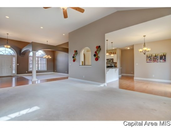 Ranch,1 Story, Residential,Single Family Residence - Chatham, IL (photo 5)