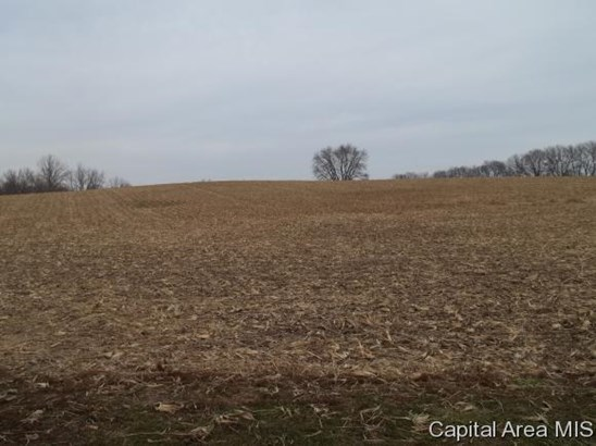 Crops,Recreation,Resident - Sherman, IL (photo 5)