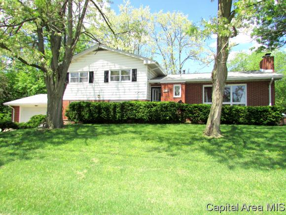 Multi-Level, Residential,Single Family Residence - Riverton, IL (photo 1)