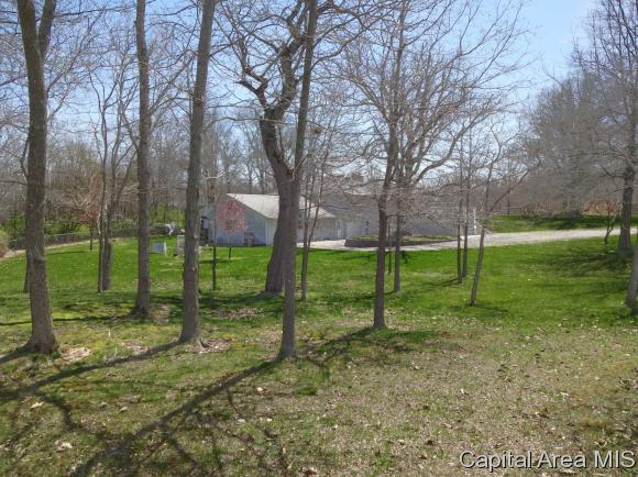 Ranch,1 Story, Residential,Single Family Residence - Palmyra, IL (photo 3)