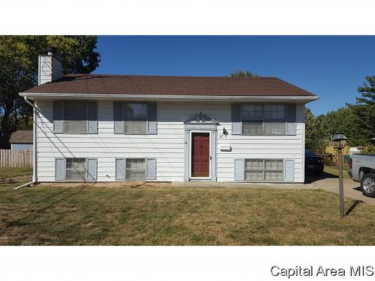 Bi-Level, Residential,Single Family Residence - Springfield, IL (photo 2)
