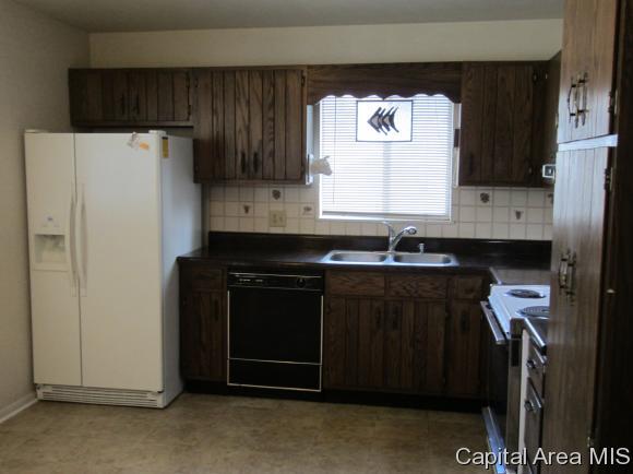 Bi-Level, Residential,Single Family Residence - Springfield, IL (photo 4)