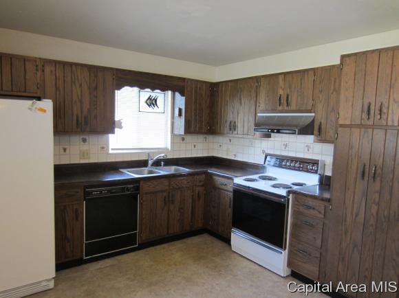 Bi-Level, Residential,Single Family Residence - Springfield, IL (photo 5)