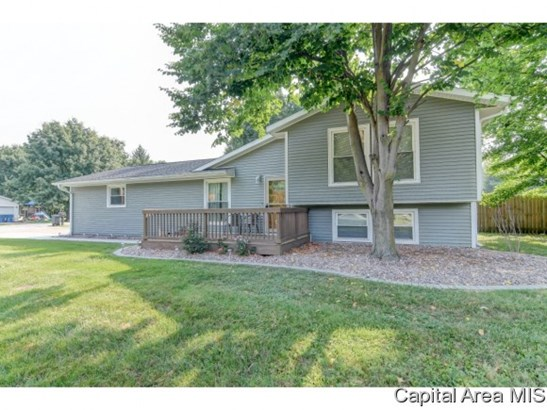 Tri-Level, Residential,Single Family Residence - Athens, IL