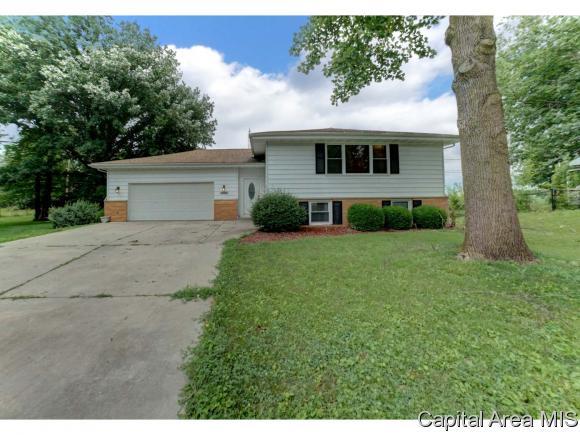 Bi-Level, Residential,Single Family Residence - Rochester, IL (photo 2)
