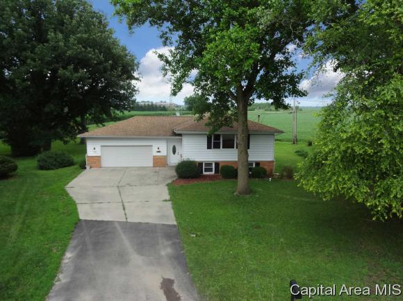 Bi-Level, Residential,Single Family Residence - Rochester, IL (photo 4)