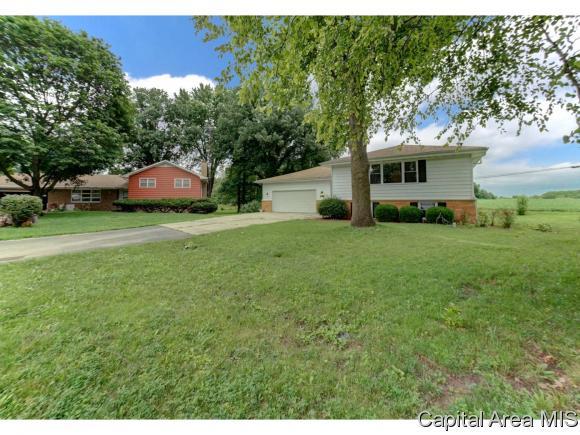 Bi-Level, Residential,Single Family Residence - Rochester, IL (photo 5)