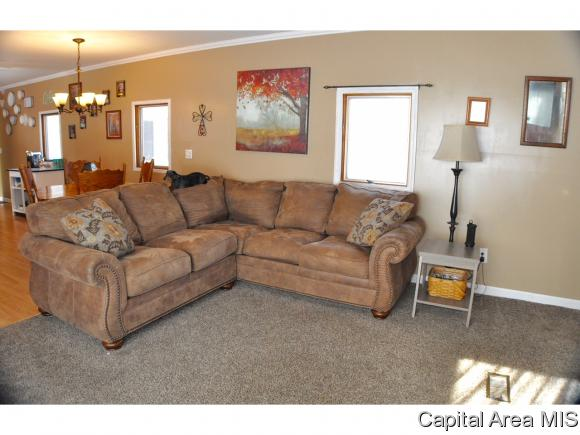 1 Story,Manufactured, Residential,Single Family Residence - Tallula, IL (photo 5)