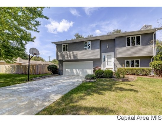 Residential,Single Family Residence, 2 Story,Bi-Level - Chatham, IL (photo 1)