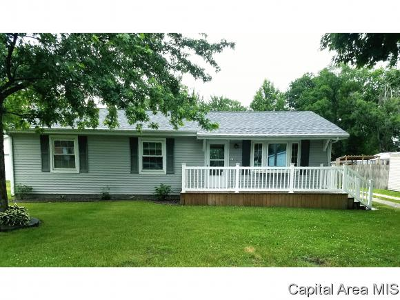 1 Story, Residential,Single Family Residence - Chapin, IL (photo 1)