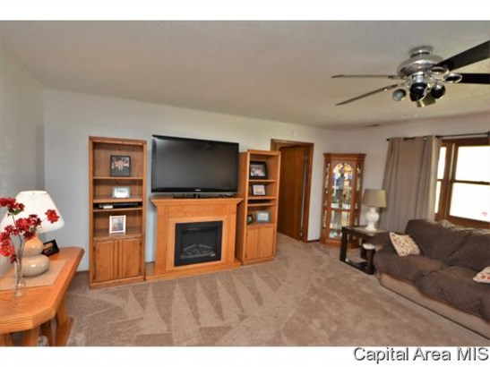 1 Story, Residential,Single Family Residence - Pleasant Plains, IL (photo 5)