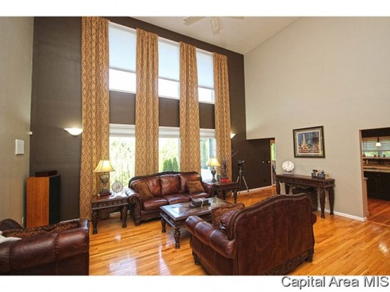 Residential,Single Family Residence, 2 Story - Springfield, IL (photo 5)