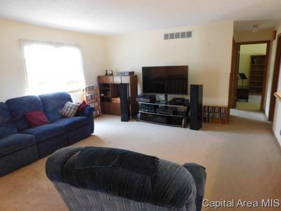 Bi-Level, Residential,Single Family Residence - Loami, IL (photo 5)