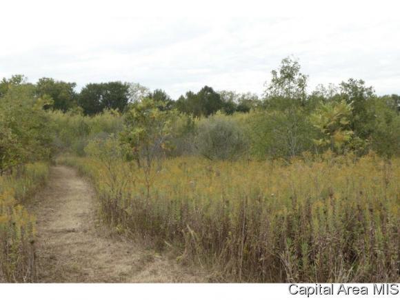 Recreation - Pleasant Plains, IL (photo 1)