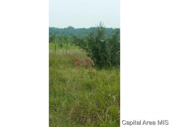 Recreation - Pleasant Plains, IL (photo 2)