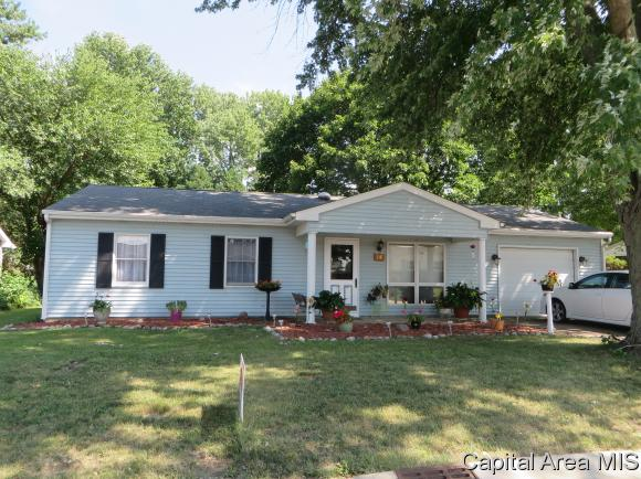 Ranch,1 Story, Residential,Single Family Residence - Williamsville, IL