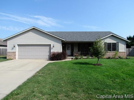 Ranch,1 Story, Residential,Single Family Residence - New Berlin, IL (photo 1)