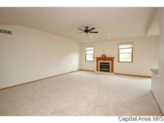 1 Story, Residential,Single Family Residence - Springfield, IL (photo 5)