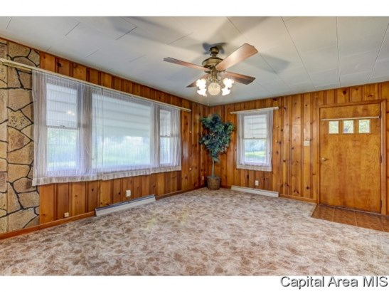 Ranch,1 Story, Residential,Single Family Residence - Virden, IL (photo 4)