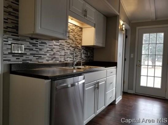 Ranch,1 Story, Residential,Single Family Residence - Palmyra, IL (photo 2)