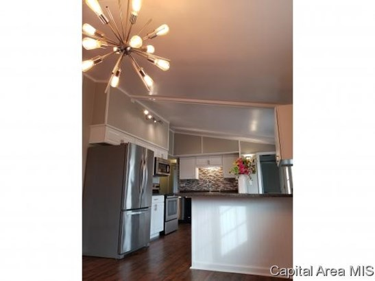Ranch,1 Story, Residential,Single Family Residence - Palmyra, IL (photo 4)