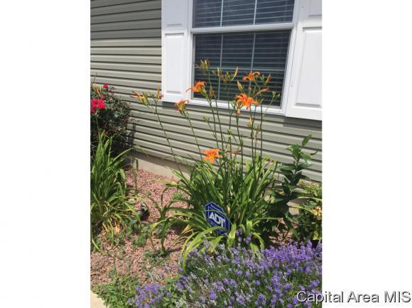 Modular,Ranch, Residential,Single Family Residence - Riverton, IL (photo 5)