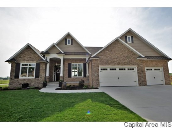 1 Story, Residential,Single Family Residence - Springfield, IL