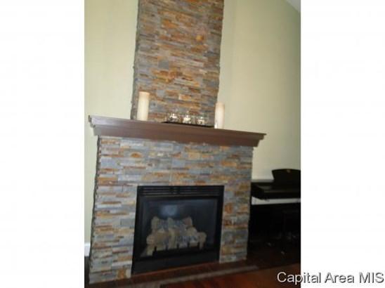 1.5 Story, Residential,Single Family Residence - Auburn, IL (photo 4)