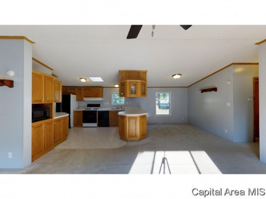 1 Story,Manufactured, Residential,Single Family Residence - Ashland, IL (photo 4)