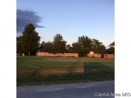 Residential - Farmersville, IL (photo 1)