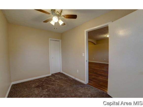Ranch,1 Story, Residential,Single Family Residence - Waverly, IL (photo 3)