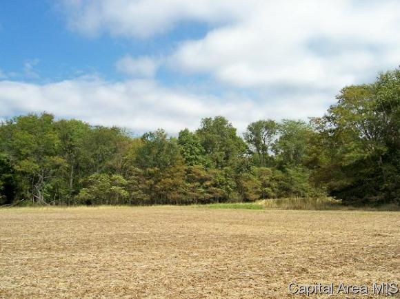 Residential - Pleasant Plains, IL (photo 1)