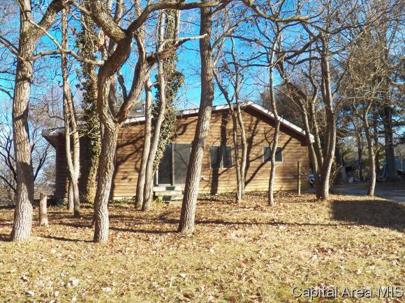 Other-See Remarks, Residential,Single Family Residence - Pleasant Plains, IL (photo 2)