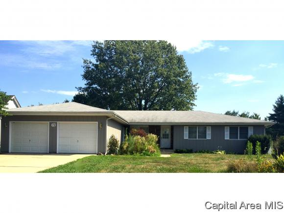 1 Story, Residential,Single Family Residence - Glenarm, IL (photo 1)