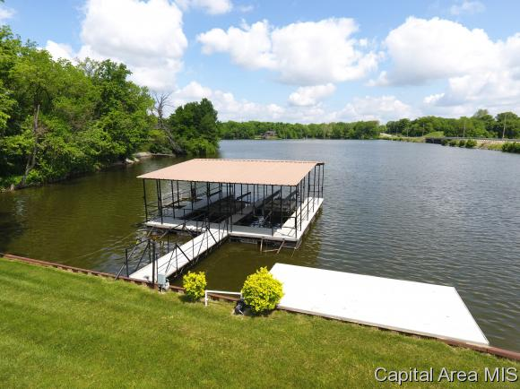 Ranch,1 Story, Residential,Single Family Residence - Chatham, IL (photo 4)