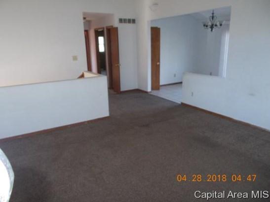 Bi-Level, Residential,Single Family Residence - Ashland, IL (photo 3)