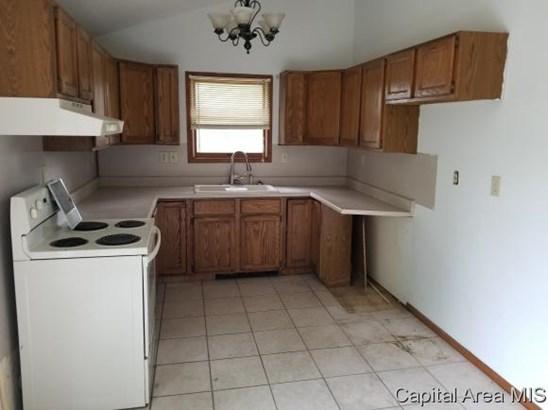 Bi-Level, Residential,Single Family Residence - Ashland, IL (photo 5)