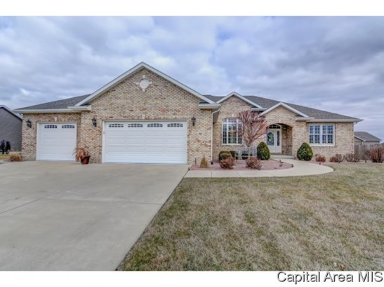 Ranch,1 Story, Residential,Single Family Residence - Chatham, IL (photo 1)