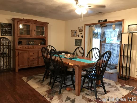 Other-See Remarks, Residential,Single Family Residence - Springfield, IL (photo 4)
