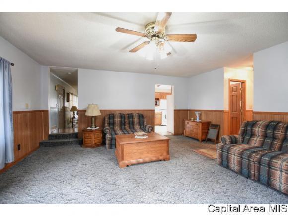 Residential,Single Family Residence, 2 Story - Buffalo, IL (photo 5)