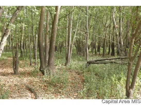 Recreation - Pleasant Plains, IL (photo 3)