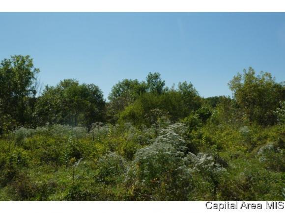 Recreation - Pleasant Plains, IL (photo 4)