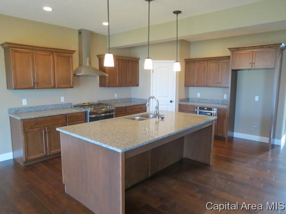 1.5 Story, Residential,Single Family Residence - Chatham, IL (photo 5)